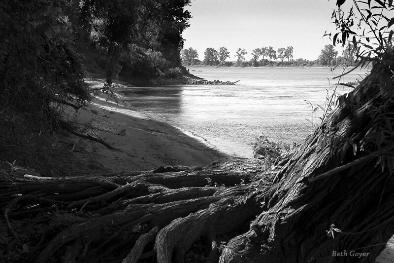 Missouri River Shore, Confluence of the Mississippi and Missouri Rivers